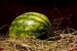 melancia, frutas suculentas,