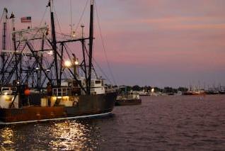 frota de pesca