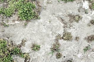 superfície da argila