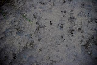 textura da superfície do solo