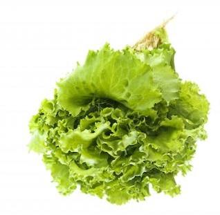 Verdes isoladas, nutrição