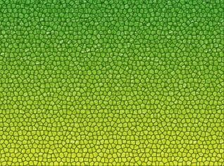 réptil textura da pele