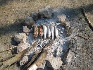 truta peixe em um churrasco