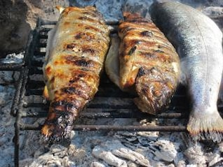 truta churrasco de peixe