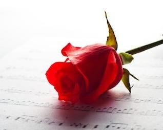 rosa e música baixo