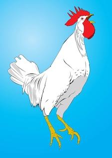vector de frango