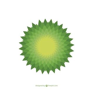 Verde mandala vetor