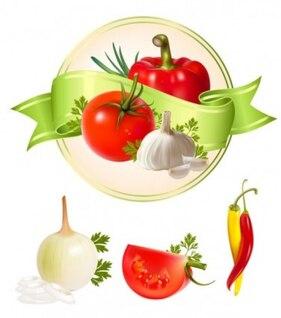 Vários alho pacote vetor legumes