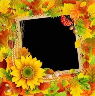 belas e coloridas folhas de outono com moldura