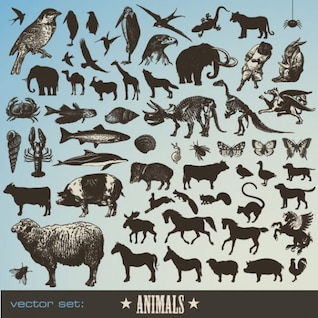 material animal vetor ícone
