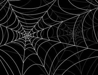 o vetor de fundo teias de aranha