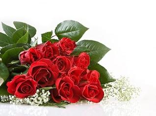 buquê de rosas vermelhas imagem