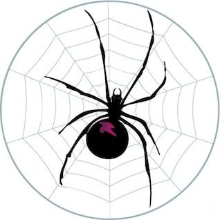 Aranha na teia circular
