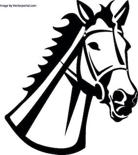 Cabeça de cavalo com freio