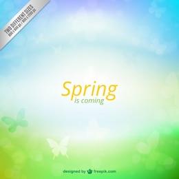 A primavera está chegando fundo
