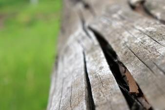 A textura da madeira rachada