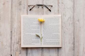 Abra o livro com flor dentro e vidros