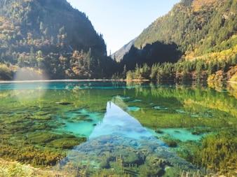 Água colorida bonita