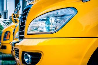 Amarela, escola, autocarro
