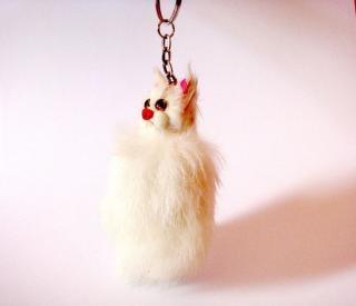Anel gato-chave, o cabelo