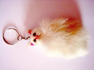 Anel gato-chave, o cabelo, peludo