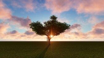 Árvore com o sol logo atrás em um campo verde