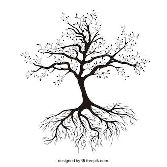 Árvore com raizes