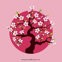 Árvore de cereja sobre o rosa dot