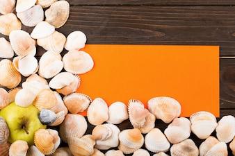 As conchas, maçã e papel de pé sobre a mesa