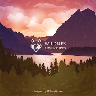 Aventuras de vida selvagem paisagem