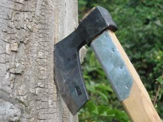 AX em uma árvore
