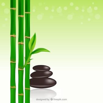 Bambu e pedras dos termas fundo