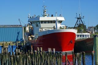Barcos no porto, iate