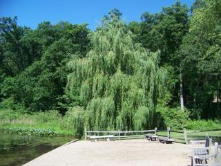 Beleza natural dos jardins lago escondido, a natureza