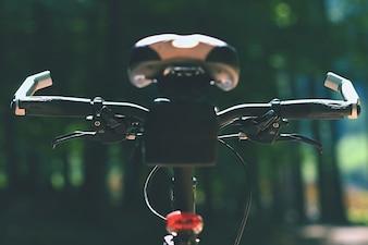 Bicicleta de montanha na floresta. Desporto na natureza.