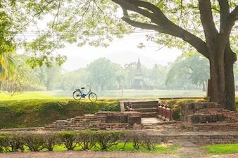 Bicicleta no parque em um dia ensolarado