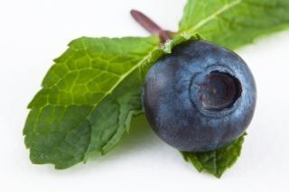 Blueberry e frutas hortelã