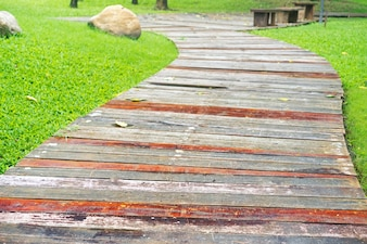 Boardwalk com folhas secas