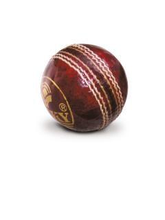Bola de críquete, bola