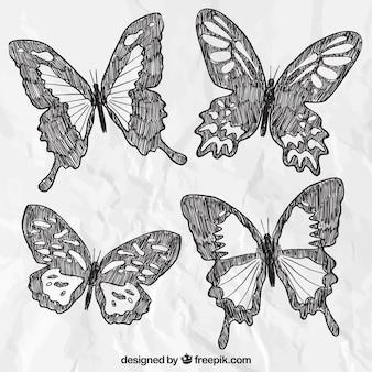 borboletas tiradas mão