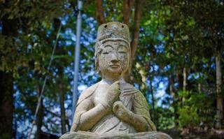 Buddha estátua rezar buda