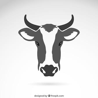 Cabeça da vaca