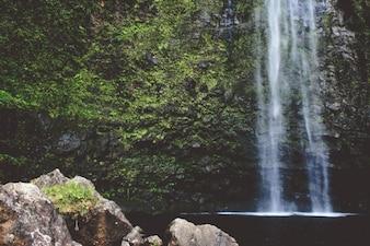 Cachoeira em movimento