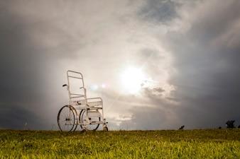 Cadeira de rodas no prado