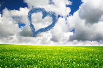 Campo de grama com coração da nuvem