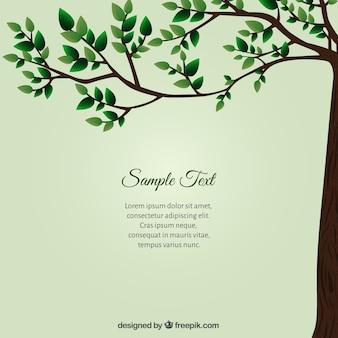 Cartão verde com árvore