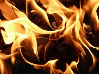 Carvão vegetal de carvão em combustão fogo churrasco quente chama