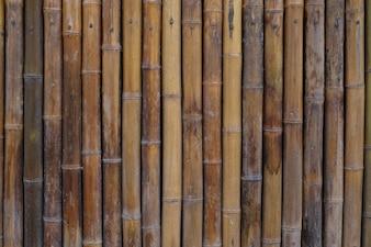 Casa de parede de bambu