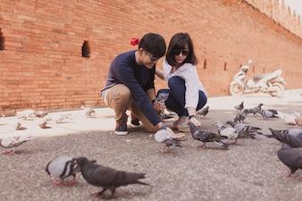 Casal agachamento olhando para pombos