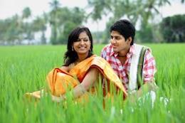 casal sentado em um campo de arroz